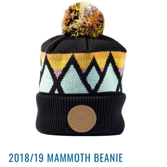 6c3d5054 Mammoth Accessories | 201819 Beanie | Poshmark